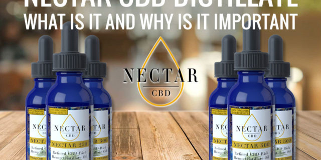 Nectar CBD Distillate: What Is It and Why Is It Important